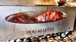 North Wales - Hogmaster